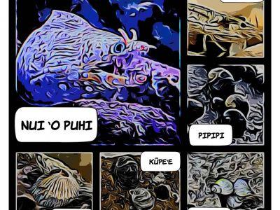 opae comic